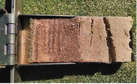 Turf Nutrition for RSA Golf Courses